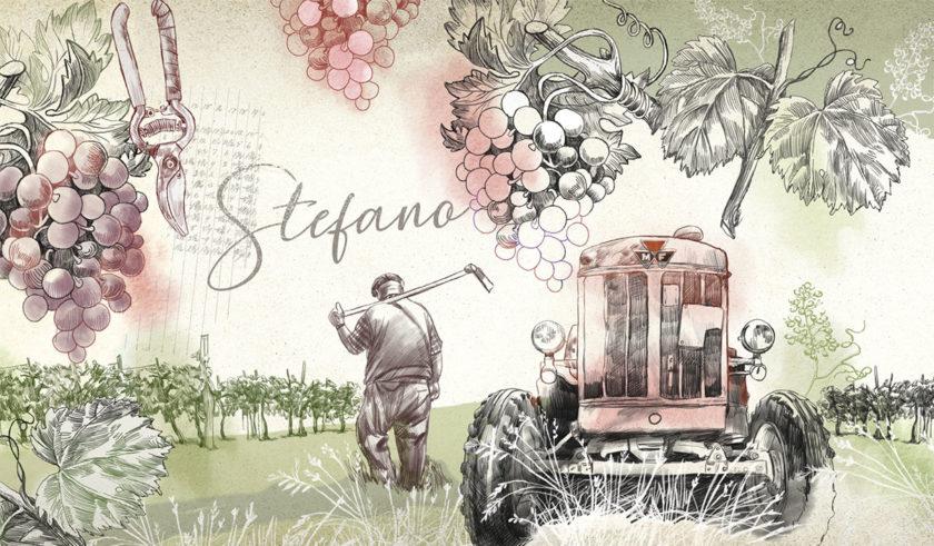 Illustrazioni per agriturismo, ogni camera personalizzata su una storia. In ricordo del fondatore Stefano.